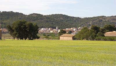 Cañada-Alicante