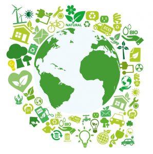 Certificado ecológico: ¿Qué es y qué ventajas tiene para el consumidor de aceite de oliva?