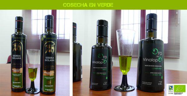 Aceite verde, así lo hemos elaborado esta cosecha en Almazara San Cristóbal
