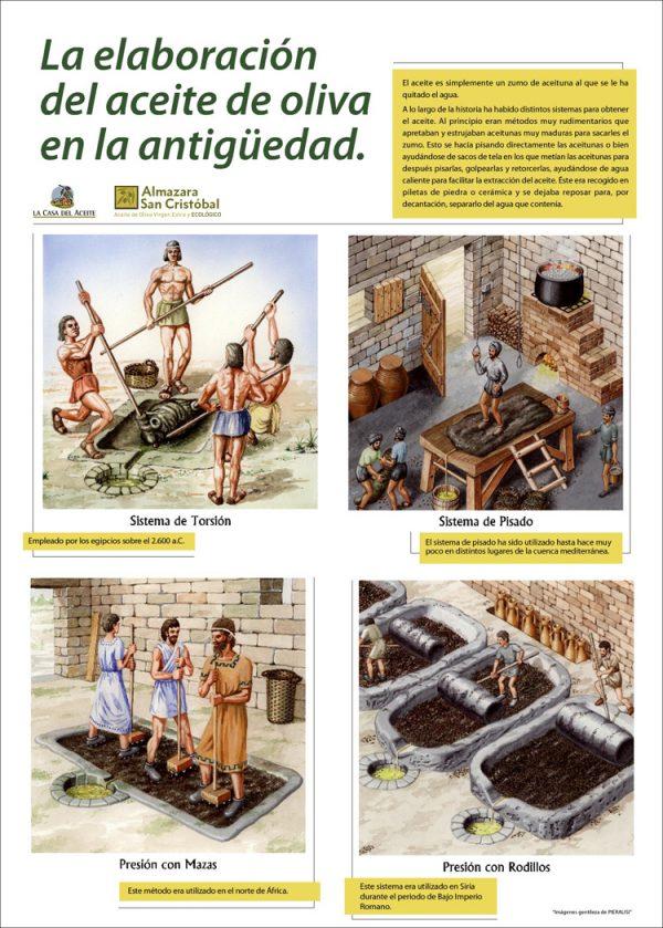 Elaboración del aceite de oliva en la antigüedad