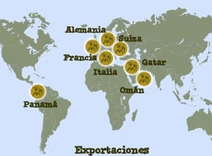 Exportación de aceite de oliva virgen extra
