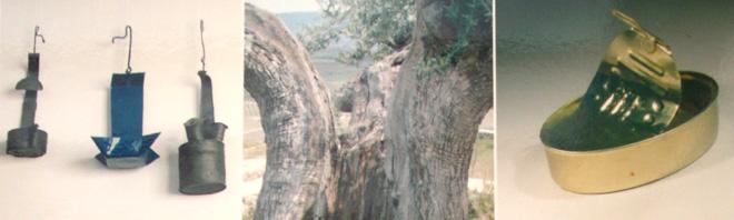 principales usos del olivo